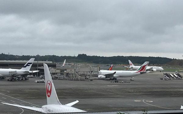 الخطوط الجوية السريلانكية تزيد رحلاتها إلى اليابان