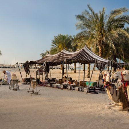 برامج لاستشكاف الثقافة المحلية والتراث العريق في قصر الإمارات